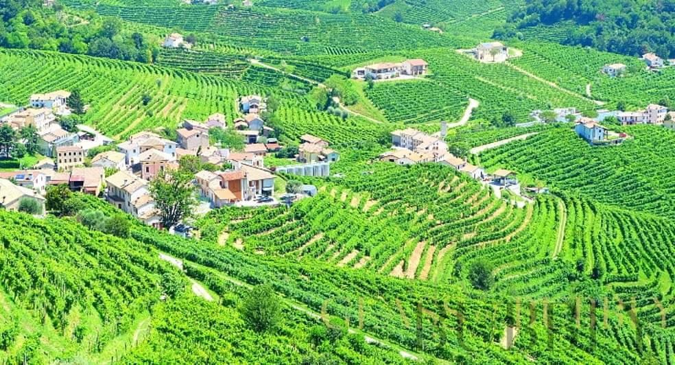 The DOCG Region of Prosecco in Italy